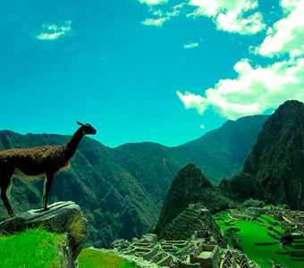 Machu Picchu by Car in 2 Days and 1 Night